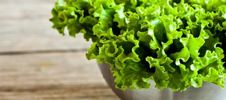 miska-zelen-zelenyy-salat